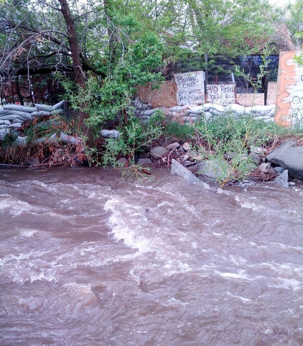 creek 1