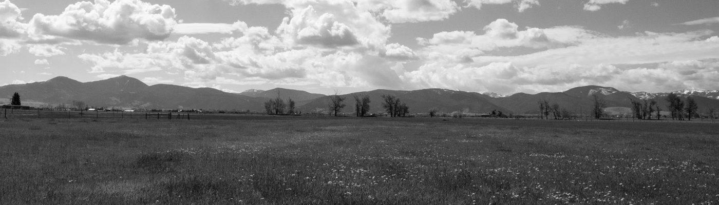 Bozeman Land